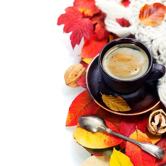 Tasse confortable de café et feuilles d'automne sur blanc