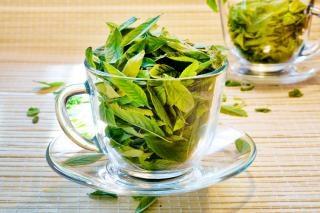 Tasse de feuilles de