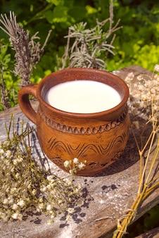 Tasse de lait sur fond de nature.