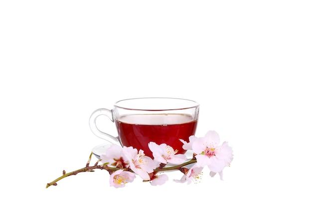 Tasse de thé avec un brin de fleurs de cerisier isolé sur un mur blanc.