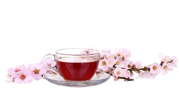 Tasse de thé avec un brin de fleurs de cerisier isolé sur une surface blanche