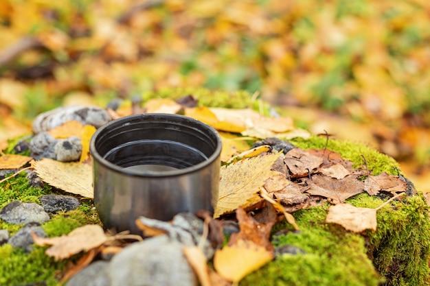 Tasse de thé sur feuillage jaune. thermos. balade dans la forêt d'automne - image