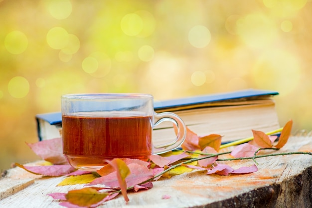 Une tasse de thé, des feuilles d'automne et un livre dans les bois sur une souche