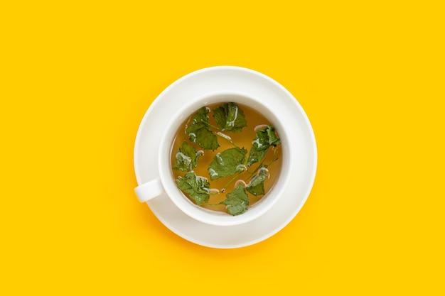 Tasse de thé avec des feuilles séchées de gotu kola sur fond jaune.