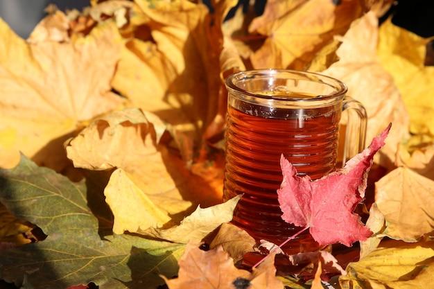 Tasse de thé sur fond de feuilles jaunes