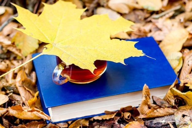 Une tasse de thé sur un livre dans la forêt d'automne est recouverte d'une feuille d'érable jaune