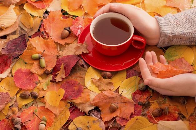 Tasse de thé à la main sur les feuilles d'automne en surface