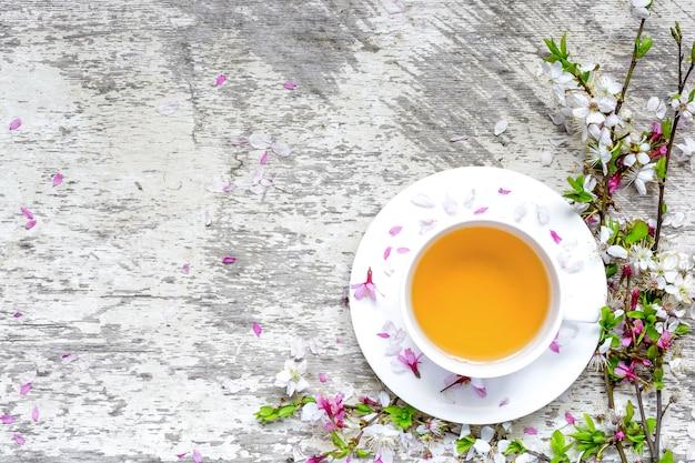 Tasse de thé vert sur soucoupe et branches de sakura et cerise en fleurs