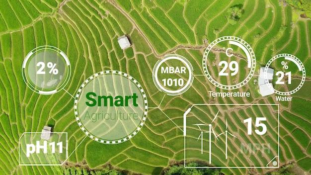 Technologie d'agriculture numérique intelligente par collecte de données de capteurs futuristes