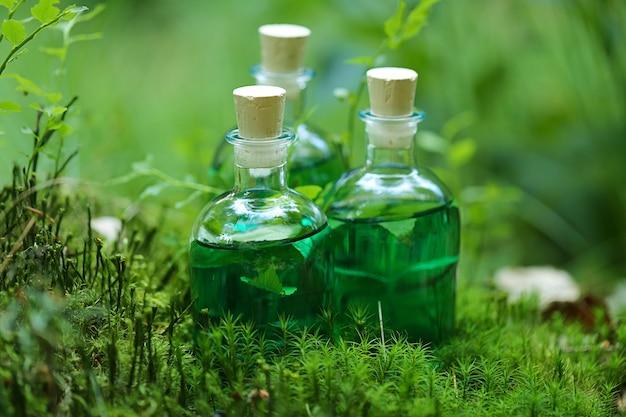 Teinture aux herbes. bouteille avec teinture de fines herbes verte et les feuilles de la fougère dans la forêt.