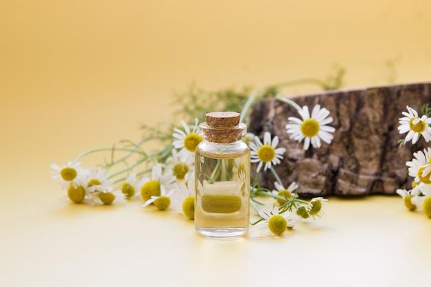 Teinture ou essence de fleurs de camomille avec des fleurs