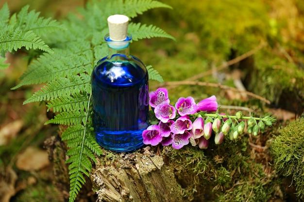 Teinture naturelle à base de plantes, potion magique.homéopathie et médecine alternative