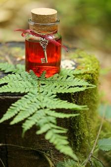 Teinture rouge dans une bouteille en verre avec une clé vintage dans le trèfle d'herbe.