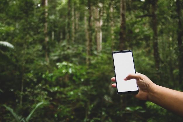 Téléphone portable dans la forêt, il n'y a pas de contact.