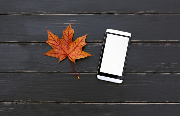 Téléphone portable, à, feuille érable automne