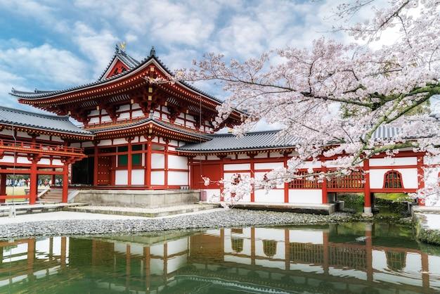 Temple byodo-in à uji, kyoto, japon au printemps. fleur de cerisier à kyoto, au japon.