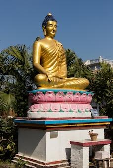 Temple des gautami nonnes, statue de bouddha, lumbini, népal