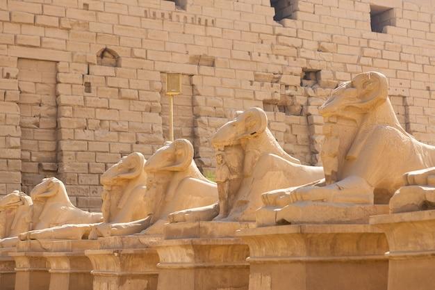 Temple de karnak, sculptures colossales de l'egypte ancienne dans la vallée du nil à louxor, hiéroglyphes en relief sur le mur.