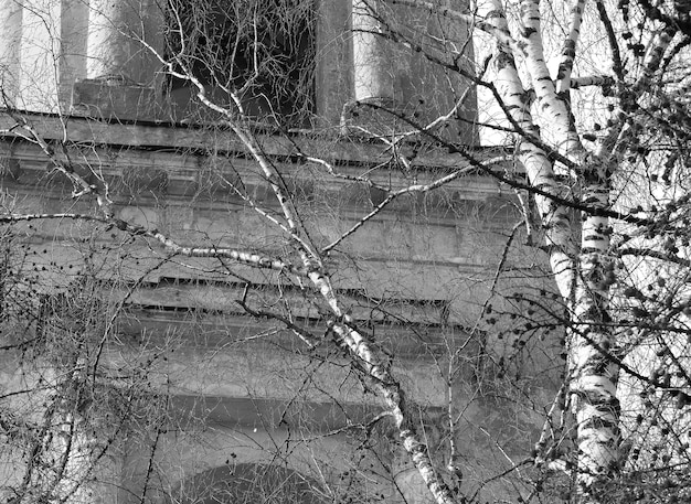 Temple orthodoxe noir et blanc en toile de fond