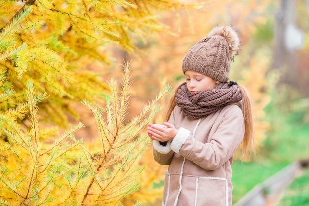 Temps de l'automne. petit enfant en automne