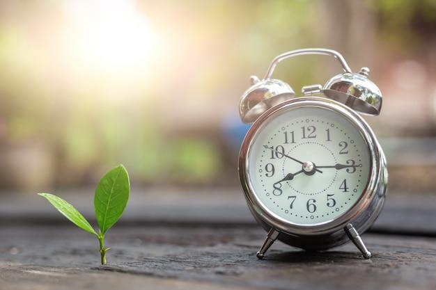 Temps et croissance des affaires