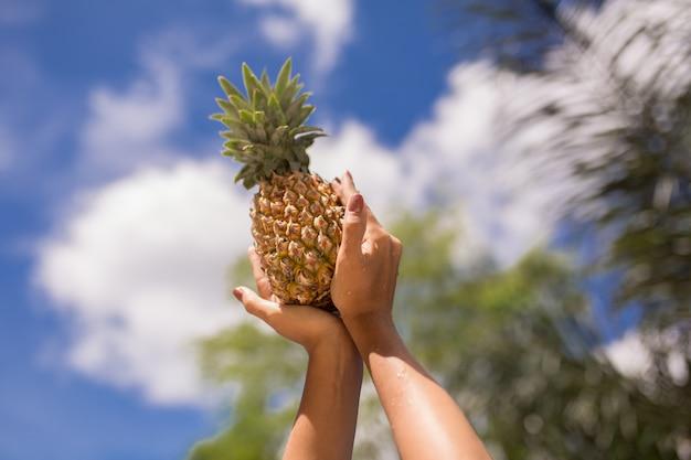 Tenant un ananas dans les mains sur le fond du ciel