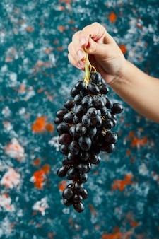 Tenant des raisins noirs sur fond bleu. photo de haute qualité