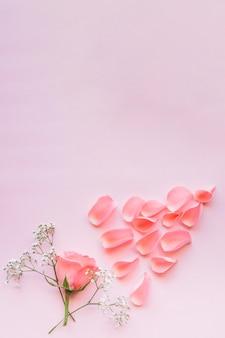 Tendres roses et brindilles florales