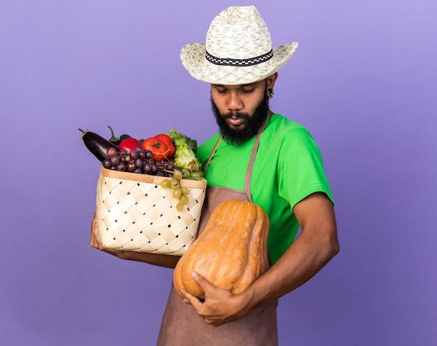 Tendu avec la tête baissée jeune jardinier afro-américain portant un chapeau de jardinage tenant un panier de légumes avec de la citrouille isolé sur un mur bleu