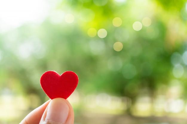 Tenir la main, ce qui signifie ressentir l'amour avec le bokeh nature verte.