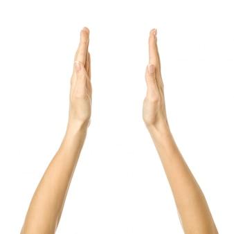 Tenir ou mesurer les mains. main de femme gesticulant isolé sur blanc