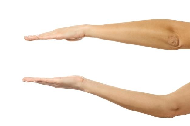 Tenir ou mesurer les mains. main de femme avec manucure française faisant des gestes isolé sur fond blanc. partie de série