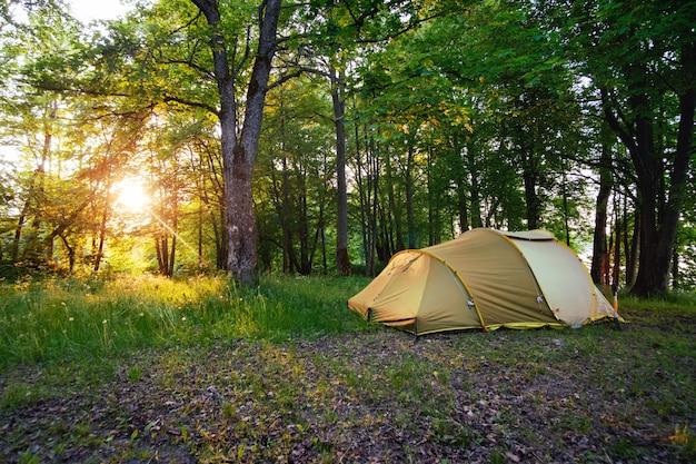 Tente de camping en forêt dans la lumière du lever du soleil