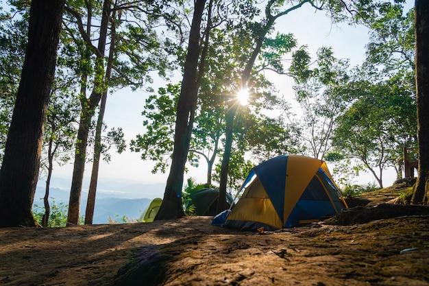 Tente de camping sur l'herbe