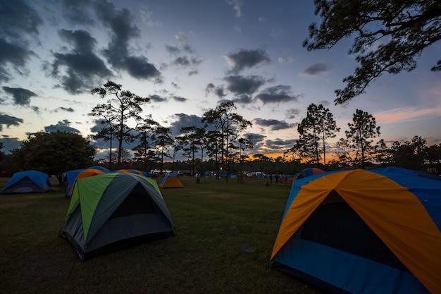 Tente dans le parc national.