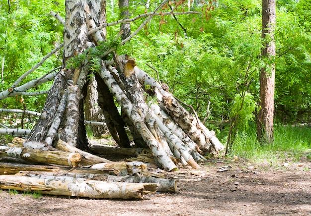 Tente faite de branches dans une forêt