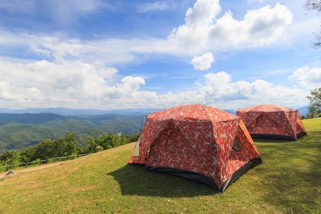 Tente touristique, dans, camp forestier, entre, pré