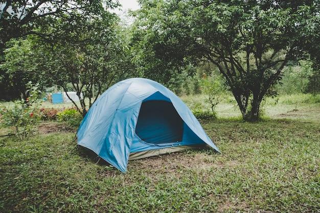 Tente touristique dans la forêt verte, tente bleue au camping au milieu des petits arbres. viêt nam.