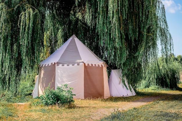Tente touristique sous un large arbre. loisirs de plein air