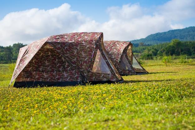 Tente de voyage sur le champ de fleurs jaunes et vue sur la montagne