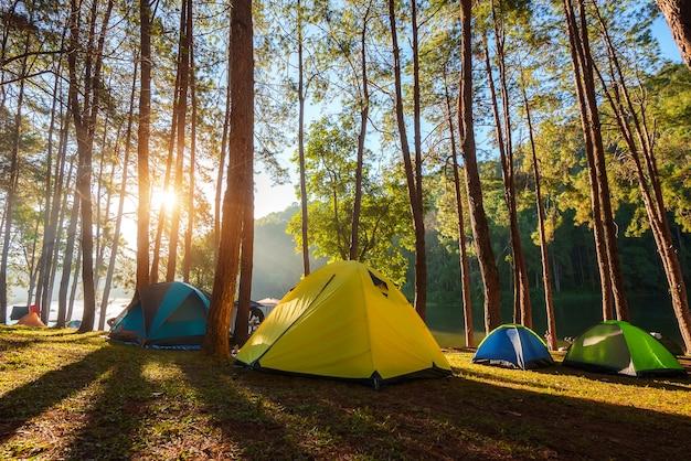 Tentes dôme dans la forêt de pins au bord du lac dans la brume au lever du soleil à pang ung (réservoir de pang tong), province de mae hong son près de chiang mai, thaïlande