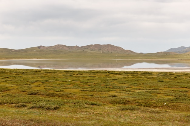 Terkhiin tsagaan lake également connu sous le nom de white lake est un lac dans les montagnes de khangai, en mongolie