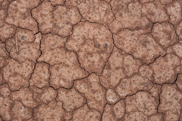 Terrain fissuré et stérile