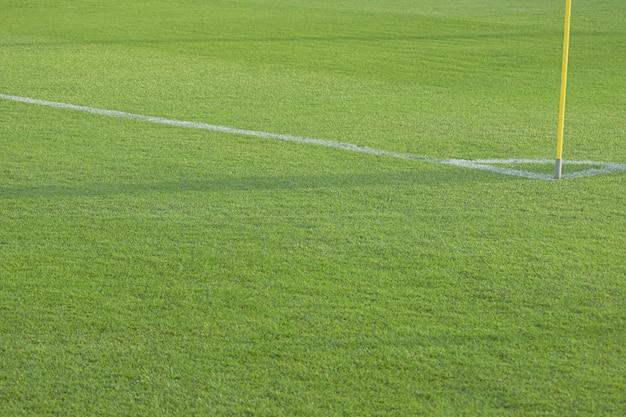 Terrain de football vide avec des marques blanches, texture d'herbe verte.