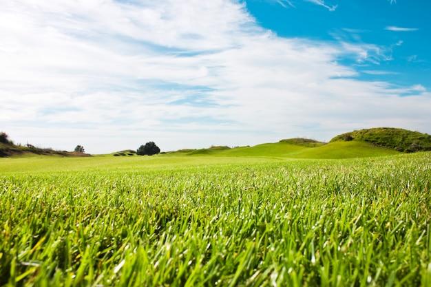 Terrain de golf à belek. herbe verte sur le terrain. ciel bleu, ensoleillé