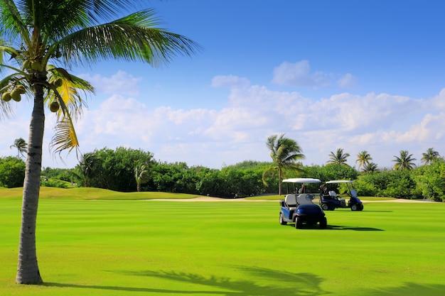 Terrain de golf de palmiers tropicaux au mexique