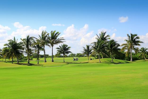Terrain de golf palmiers tropicaux mexique