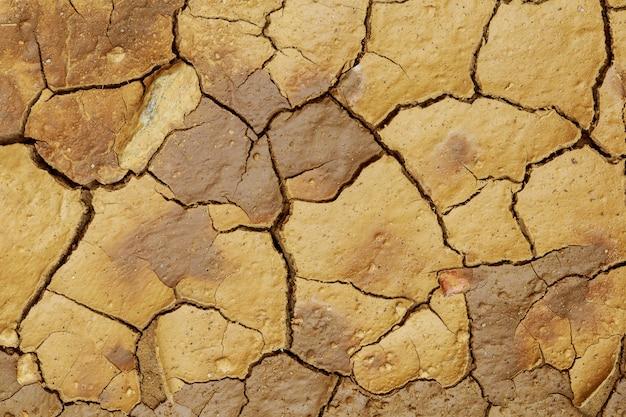 Terrain avec un sol sec et fissuré.