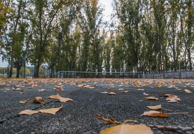 Terrain de tennis en automne