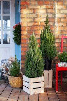 La terrasse de la maison est décorée d'arbres de noël